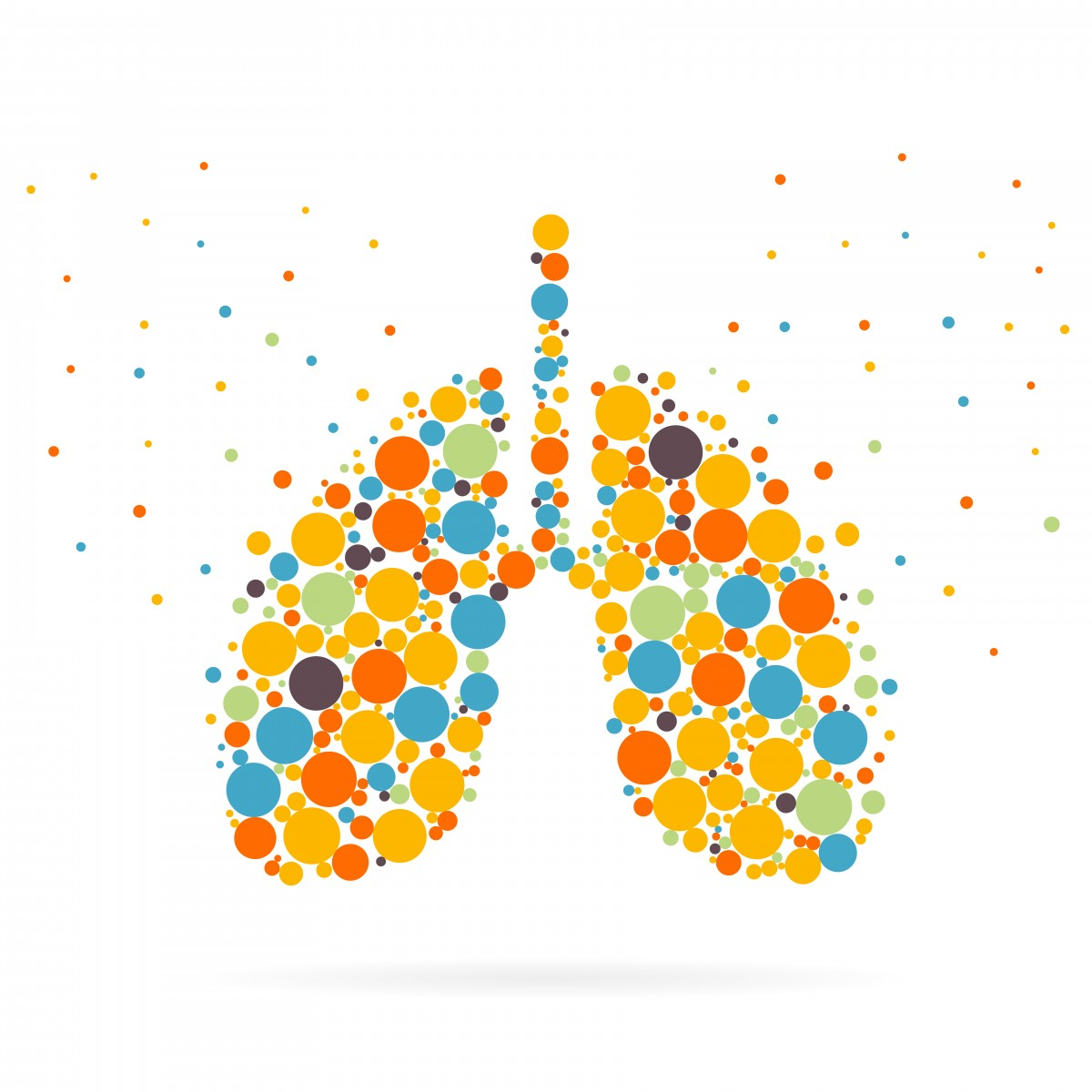 Exacerbations in Non-cystic Fibrosis Bronchiectasis Explored in Observational Cohort Study